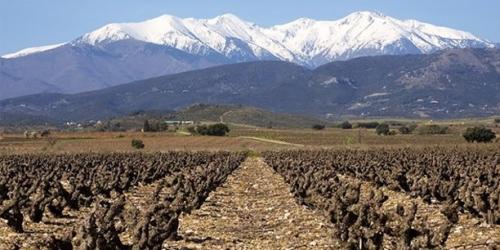 Gite rural Pyrénées Orientales, Roussillon